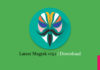 Download Latest Magisk v13.1