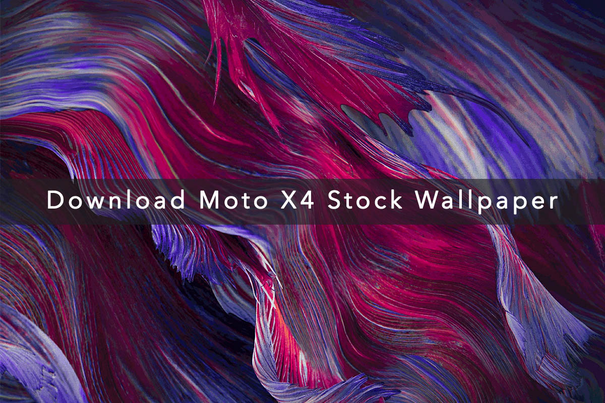 Download Moto X4 Stock Wallpapers
